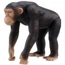 アニア AS-14 チンパンジー タカラトミー, , by タカラトミー